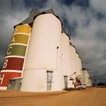 Is grain handling the most dangerous job in the country?