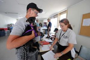 photo of FEMA volunteer and dog