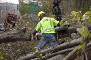 photo of Sandy cleanup