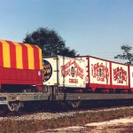 Dangerous fun: The circus as workplace