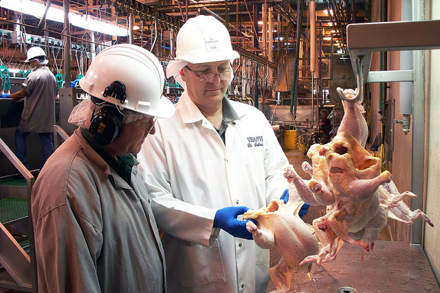 Lockout/Tagout Accidents in Poultry Processing