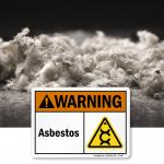 Asbestos: A Brief History
