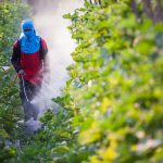 Say no to pesticide spraying effortlessly