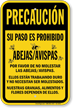 Spanish Bee Safety Caution Sign