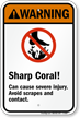 Sharp Coral! – Can cause severe injury. Avoid scrapes and contact. (with graphic)