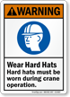 ANSI Crane Warning Sign